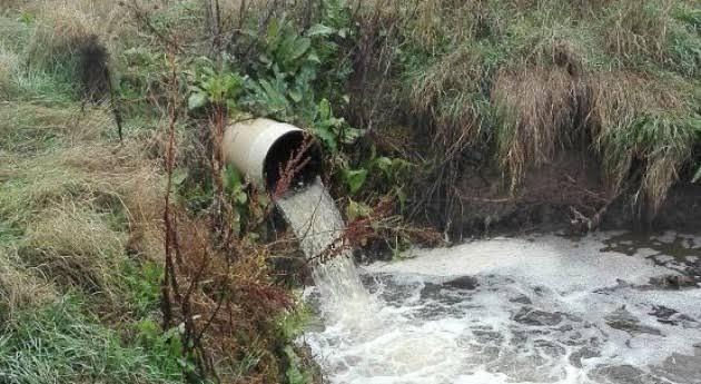 Yucatán: Seis empresas vierten aguas residuales sin permiso (Punto Medio)