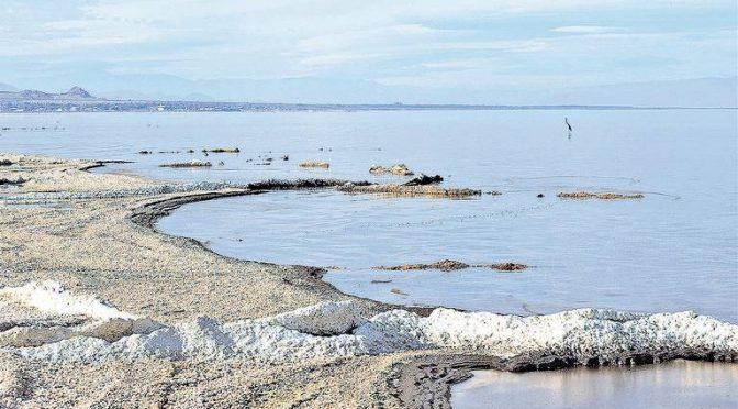 Estado Unidos: El Río Nuevo causa nueva emergencia (La voz de la frontera)