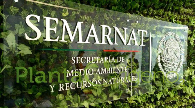 México: Titular de Semarnat solicita establecer en la ley la emergencia ambiental (La Jornada)