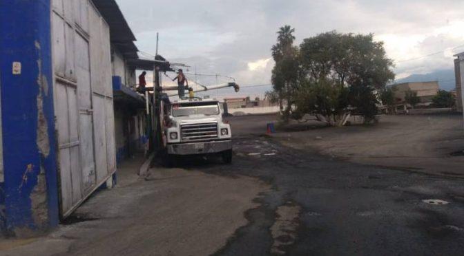 Edomex: Texcoco, el paraíso de los piperos (El Sol de México)