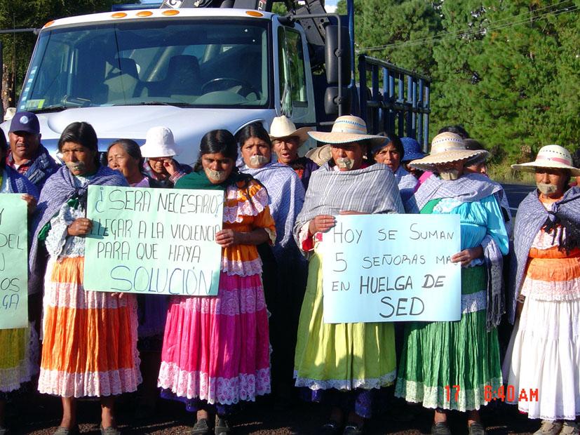 La lucha por el agua y estrategias de movilización en el caso del Frente Mazahua