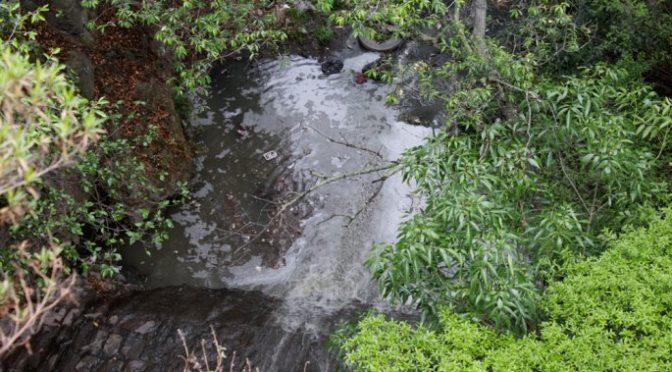 Gobierno estatal desconoce calidad de agua del río Atoyac (El Popular)