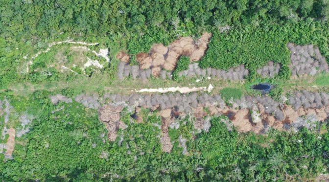 Yucatán: Cerros de excremento enferman a la población y contaminan cenotes en Hunucmá (Animal Político)