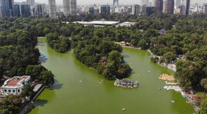 #ForoChilango: CDMX necesita más parques como Chapultepec (Chilango)