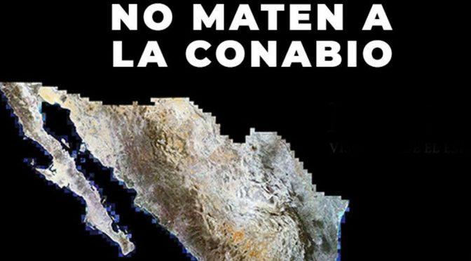 México: Transformar a la Conabio en un organismo desconcentrado mataría a la institución: Soberón (Diario de México)