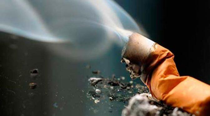 Greenpeace alerta por contaminación de colillas de cigarros (Pulso)