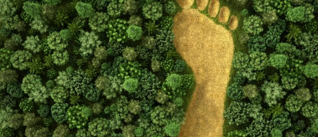 El consumo de hoy día: menos calidad y más huella ecológica (Dirigentes Digital)