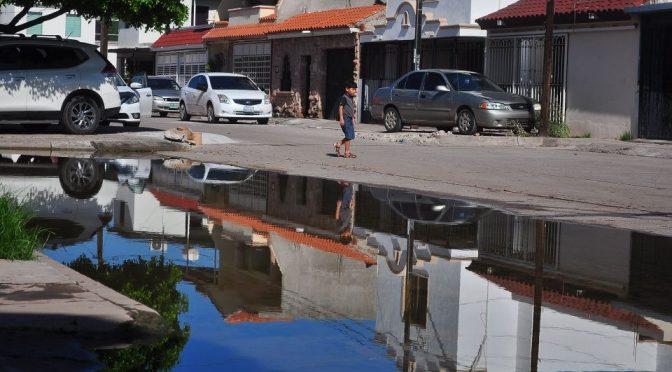 Sinaloa: Denuncian 20 años de fugas de aguas negras en Fovissste 2 (Debate)