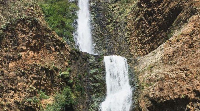 El agua como identidad de Jalisco (Informador)
