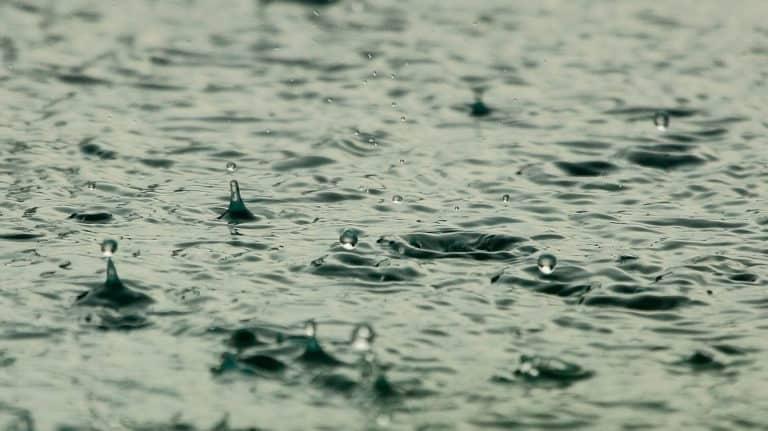 CDMX: Isla urbana captación de lluvia (Este País)