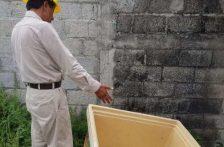 Hidalgo: Combaten dengue con programa de prevención en casa (Criterio)