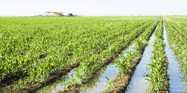 Chihuahua: Gobierno quiere imponer arancel al agua (Heraldo de Chihuahua)