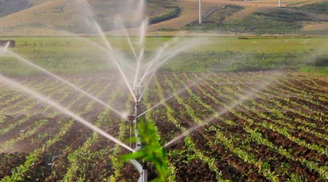 Guanajuato: Destinan 11 mdp para proyectos de riego (Milenio)