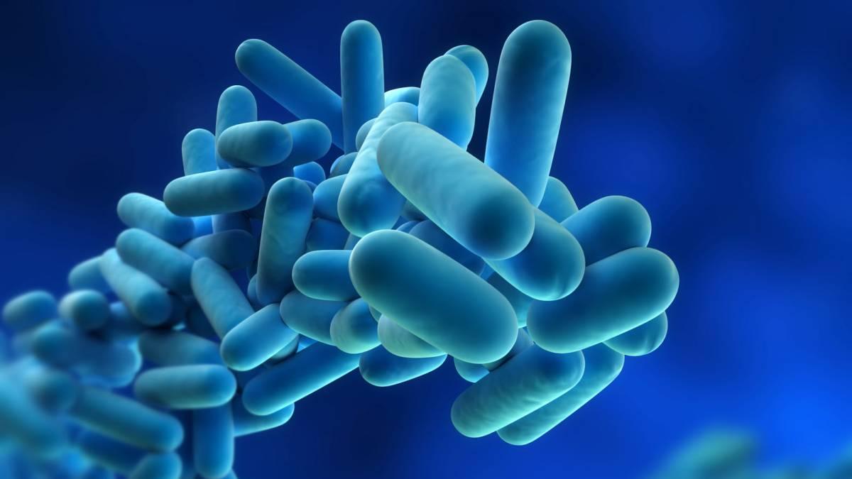 Métodos de desinfección del agua y su implicación en la legionelosis