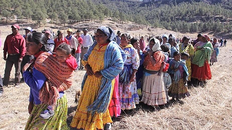 Los recursos hídricos en las regiones indígenas de México