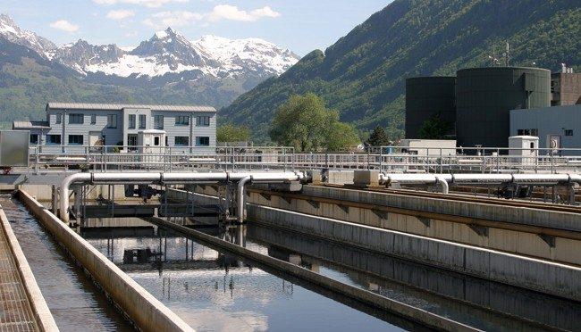 El uso de microalgas es clave para avanzar hacia la sostenibilidad en el tratamiento de las aguas residuales (NCYT)