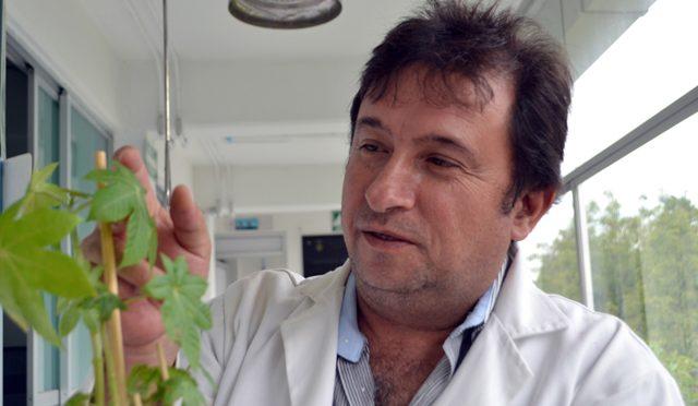 Puebla: Investigadores de la FIQ trabajan en la eliminación de contaminantes orgánicos en agua y suelo (desdepuebla.com)