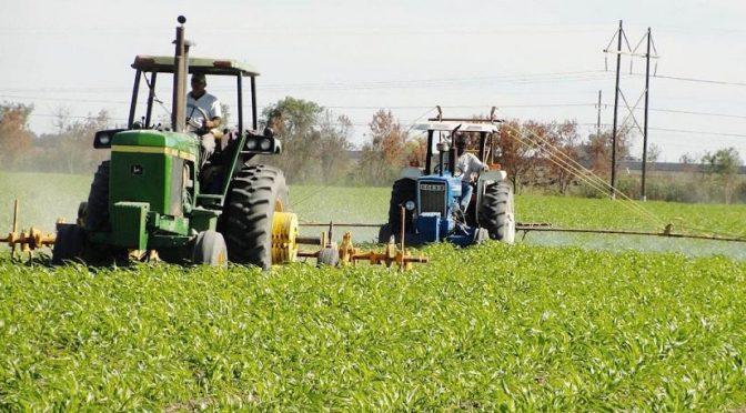 Tamaulipas: Lamentan escasez de agua para riego (El Diario)