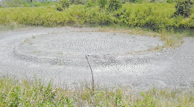 Ganaderos desesperados por la falta de agua en Ozuluama, Veracruz (El Sol de Tampico)