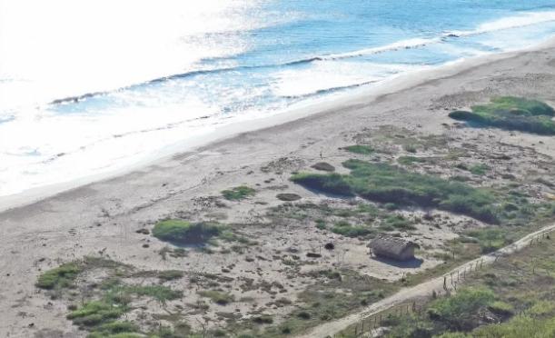 Oaxaca: Devastación. Chacahua, amenazada por lotificación ilegal de playa (El Universal)