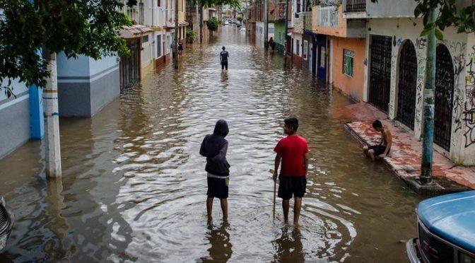 Michoacán: Urbanizadas, áreas de cinco humedales: Experto (El Sol de Morelia)