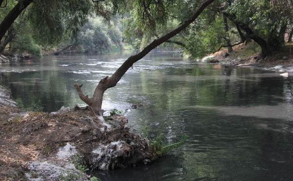 México: Desairan rescate de dos ríos (Heraldo de México)