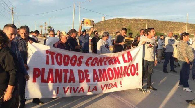 Sinaloa: Relanzan planta de amoniaco de 20 mil mdp (El Sol de Zacatecas)