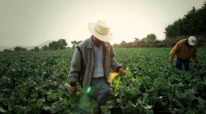 Puebla: Exigen egidatarios una ampliación de 2.5 mil mdp para el campo (La Jornada de Oriente)