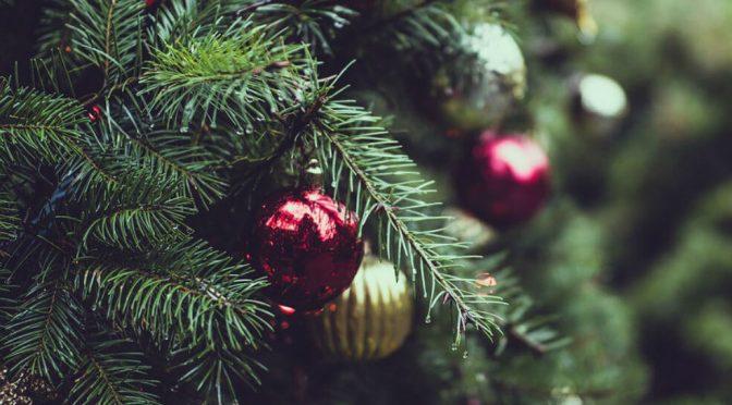 Colombia: Sea amigable con el medio ambiente en Navidad, estas son algunas recomendaciones (El Espectador)