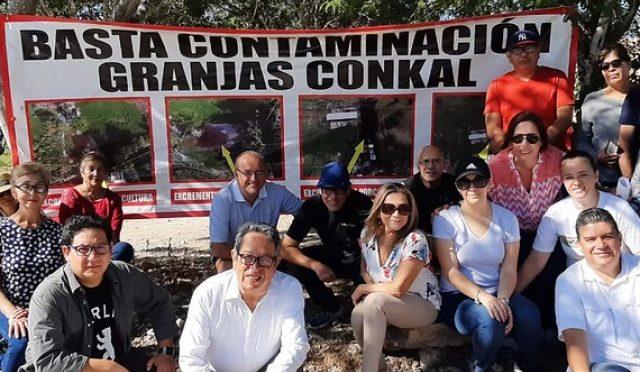 Yucatán: Granjas porcícolas contaminan suelo, agua y medioambiente en Conkal (Yucatán a la mano)