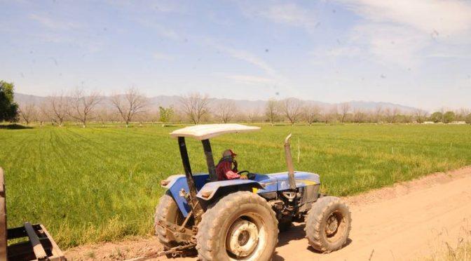 Coahuila: Sólo 900 millones de metros cúbicos para ciclo agrícola 2020 (El Sol de la Laguna)