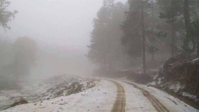 Oaxaca: Primeras heladas dañan cultivos en la Mixteca y Valles Centrales (Oaxaca Político)