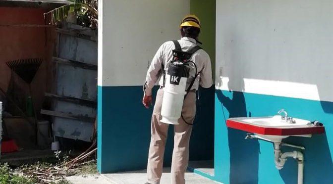 Veracruz: Más de 30 mil depósitos de agua revisados en acciones contra dengue en la Huasteca (La Jornada de Veracruz)