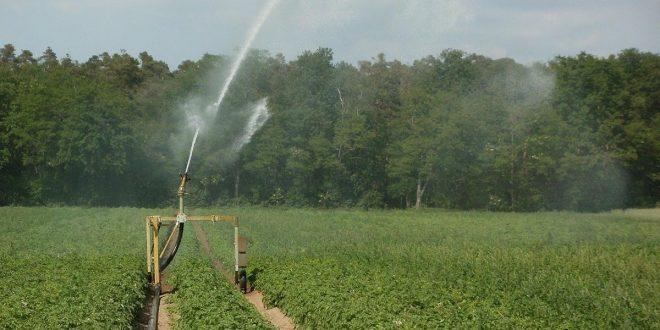 Europa quiere garantizar el riego agrícola con la reutilización de las aguas residuales tratadas (Cambio 16)