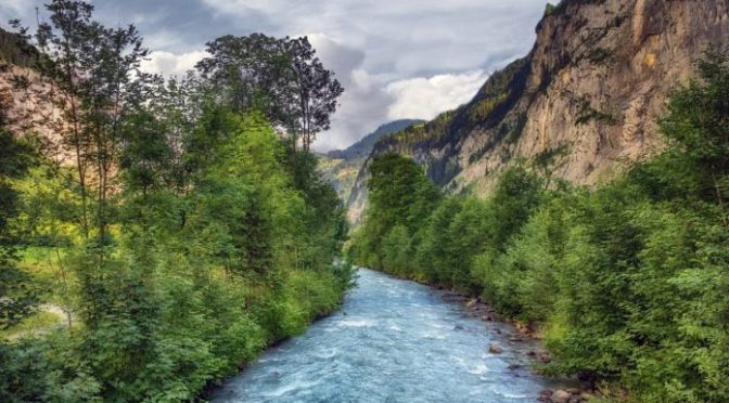 España: Residuos orgánicos, una herramienta útil para lograr ríos y arroyos menos contaminados (conicet)