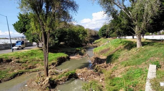 Michoacán: Ríos Chiquito y Grande, hasta 250% más contaminados que otros afluentes del país (La Voz)
