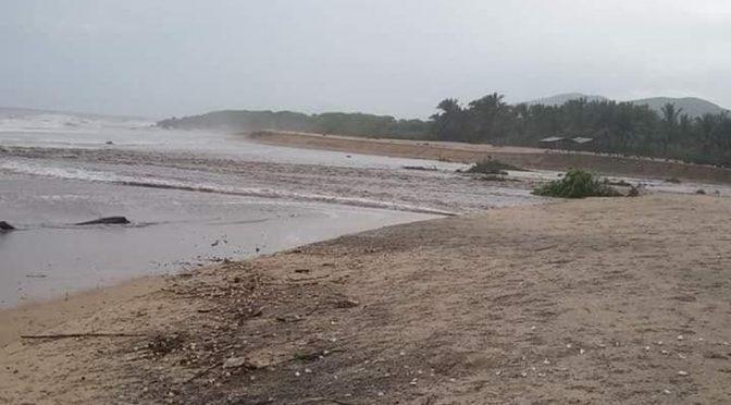 CDMX: Con cifra récord termina temporada de ciclones (Milenio)