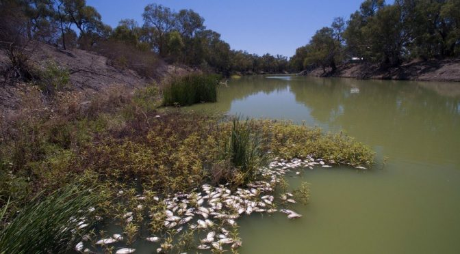 Australia: Los incendios amenazan con contaminar las fuentes de agua potable (National Geographic)