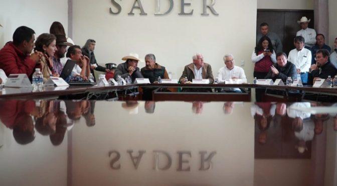 México: Iniciarán proyecto de obra para la captación y aprovechamiento de agua (Prensa Animal)