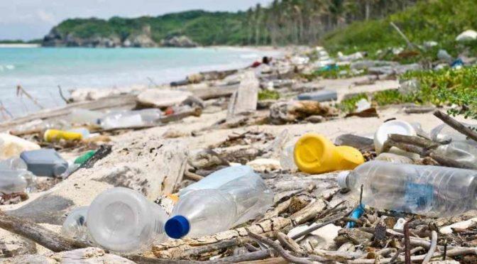 México: Pacífico, un mar de microplásticos (El Democrata)