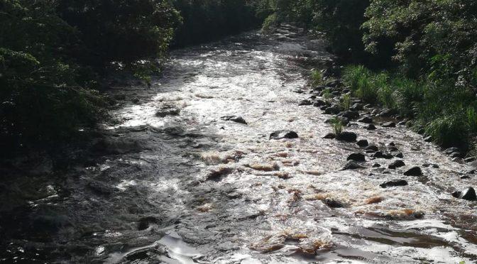 Veracruz: Inicia zafra y regresan los daños al río Blanco (Diario El Mundo)