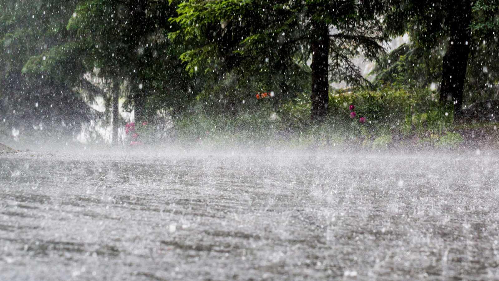 Origen de las precipitaciones extremas de la cuenca del Río Balsas, México