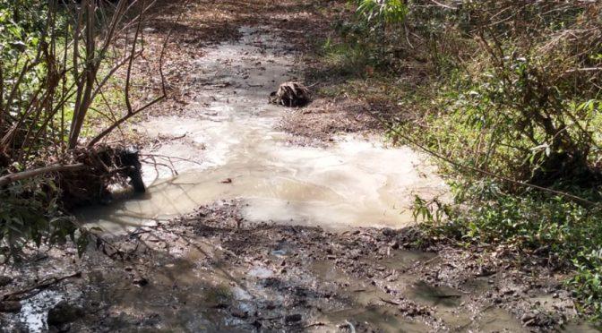 Guanajuato: escurren aguas negras a Presa de los Santos (Periódico Correo)