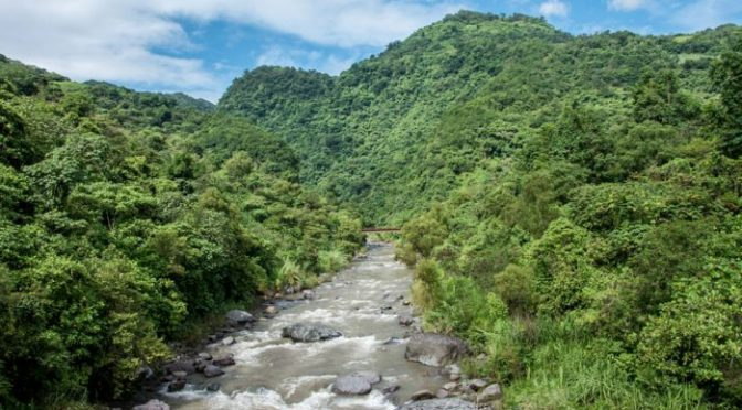 Puebla: Empresas poblanas tras megaproyectos hidroeléctricos, de las que más consumen agua en el país (Ladobe)