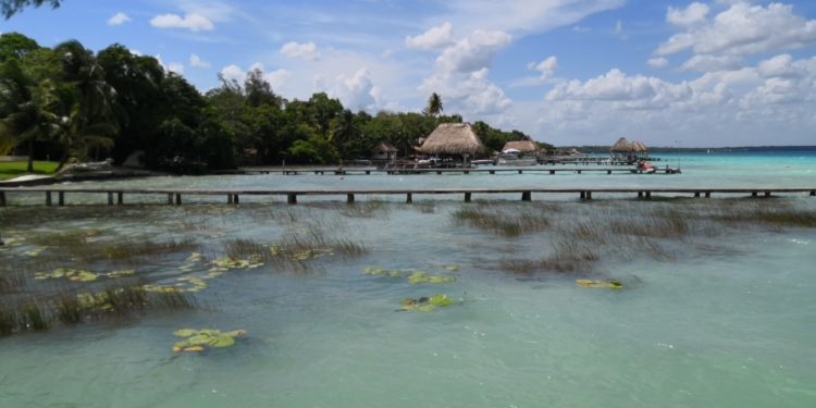 Quintana Roo: Peligra la Laguna de Bacalar por contaminación crónica (Ruptura 360)