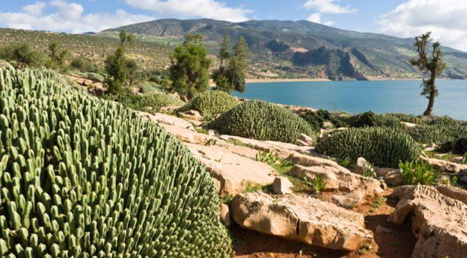Madrid: Marruecos invertirá 12.000 millones de dólares en agua (El ágora diario)