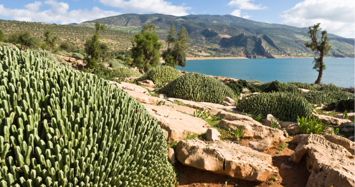 Marruecos: El país africano enfrenta su estrés hídrico con inversiones en presas, desalación y reutilización de agua (iAgua)