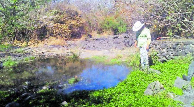 Morelos: Se seca el manantial Chihuahuita de Emiliano Zapata (El Sol de Cuernavaca)