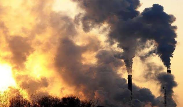 México: T-MEC aplicará aranceles por daños a medio ambiente (Pilotzi noticias)