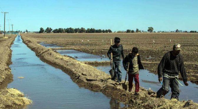 Empresas acaparan agua mexicana que podría nutrir comunidades: MCCI (La Silla Rota)